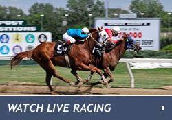 bttn_watch-live-racing